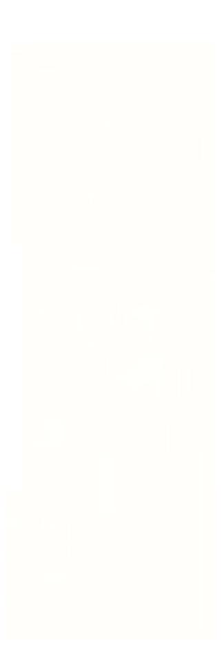 Arena flag