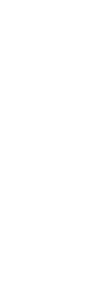 Eastern Arena flag